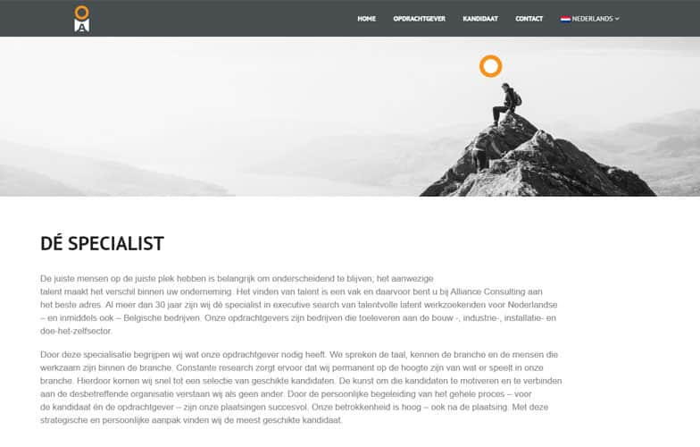 Alliance Consulting Website Na